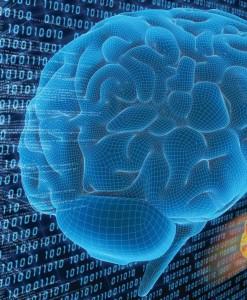 La mente más allá del cerebro