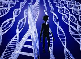 ADN-2BEXTRATERRESTRE