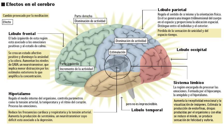 La psiquiatría demuestra los beneficios de la meditación.