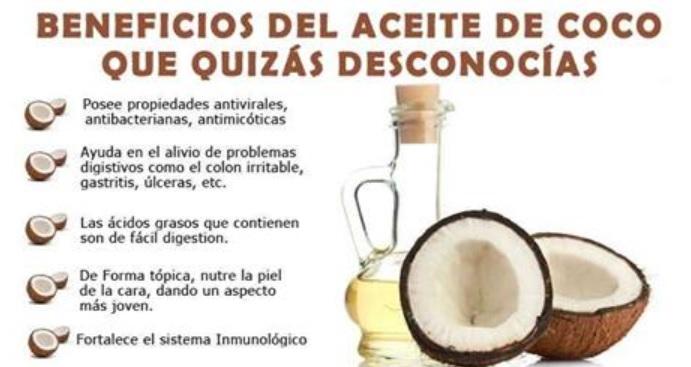 Moroccanoil treatment el aceite para los cabellos las revocaciones
