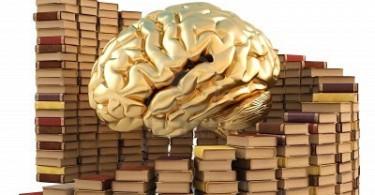 cerebro-literatura