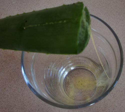 como hacer gel de aloe vera en casa
