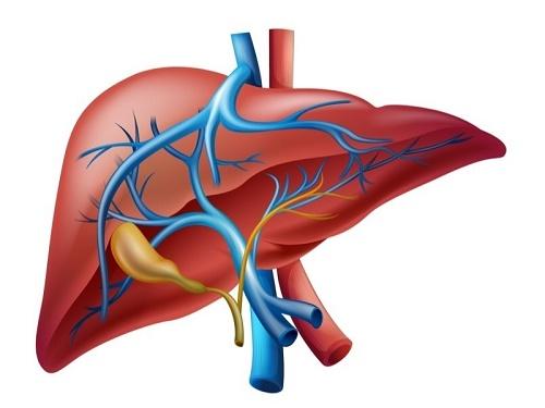 Hígado gráfico