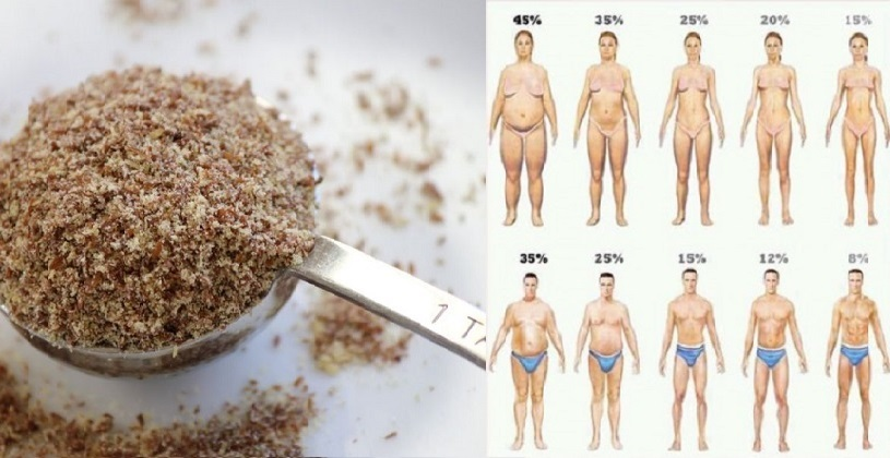 dieta con semillas de lino