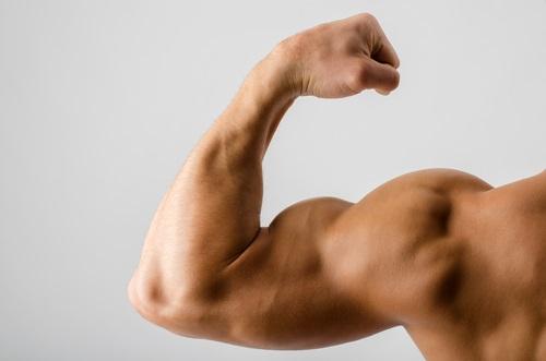 La espinaca aumenta la resistencia muscular