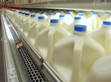 leche vegetal leche de vaca
