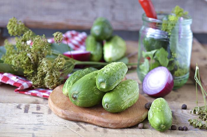 Verduras eneldo pepinos en vinagre