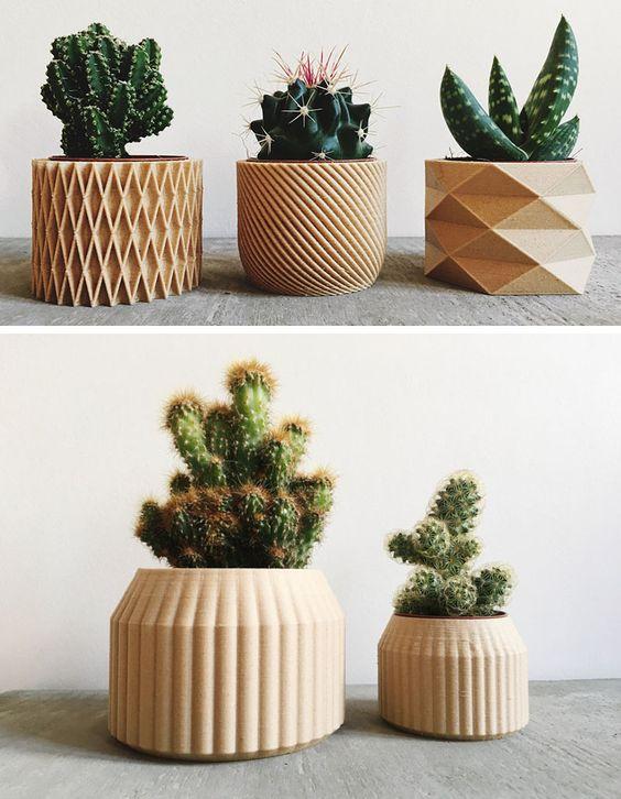 Contenedores biodegradables con plantas