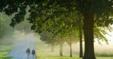 couple_walking