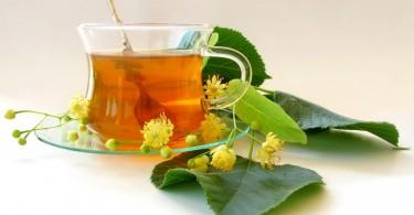 herbal-tea-21792