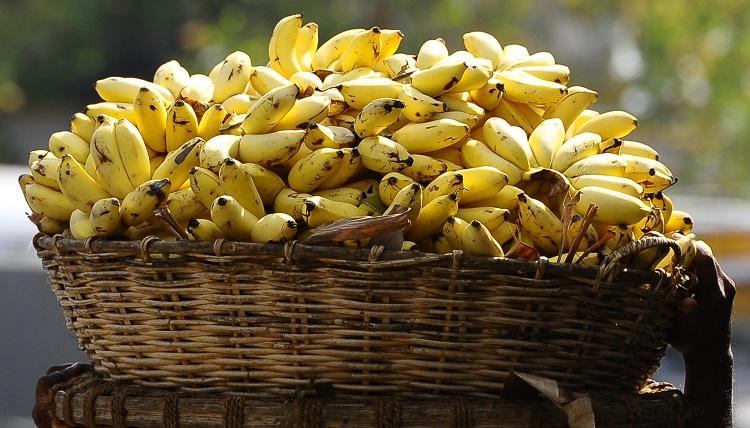 propiedades medicinales banana