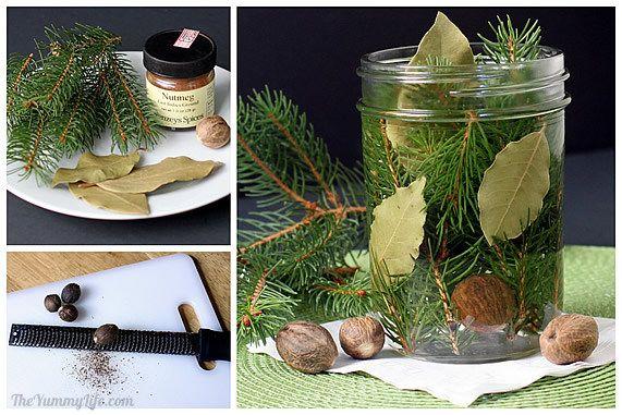 fragancias naturales de pino