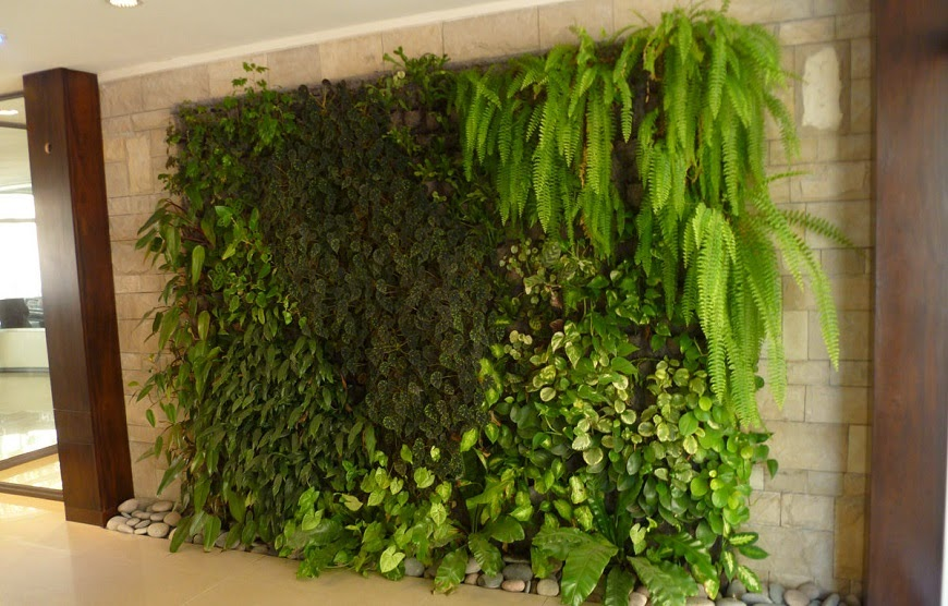 Beneficios de un jard n vertical con hierbas for Jardin vertical interior casero