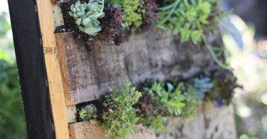 jardin-vertical
