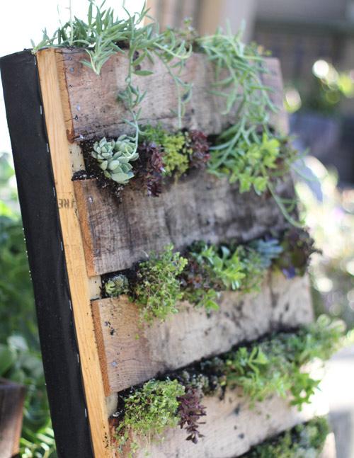 cmo hacer un jardn vertical en casa - Jardines Verticales Caseros