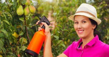 pesticidas naturales jardín
