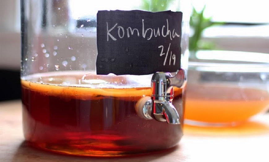 como preparar kombucha