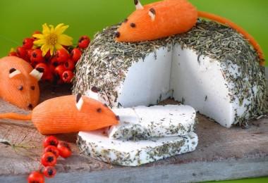 ratoncillos-en-el-queso-copia