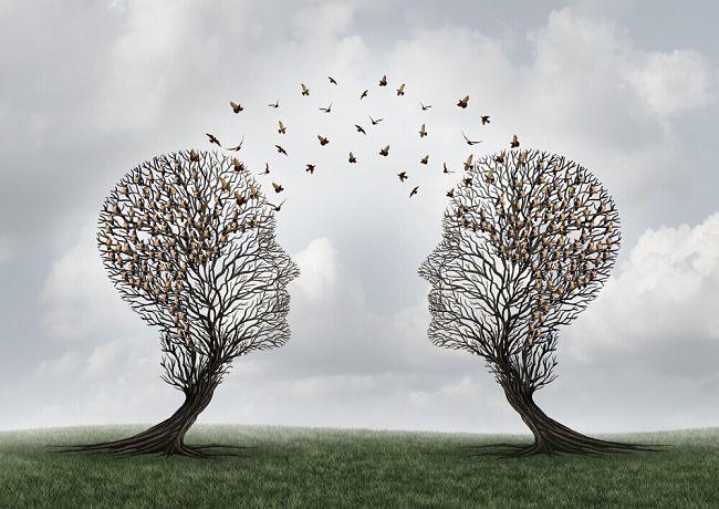 dos árboles tratando de comunicarse
