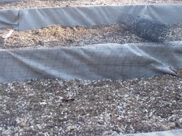 techo verde paso erosión