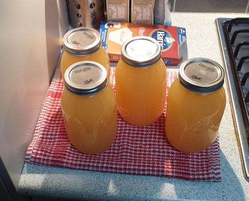 jugo de manzanas conservando