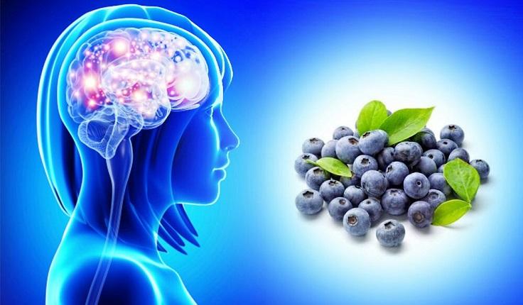 alimentos que mejoran la memoria