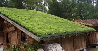 greenroof1000x755