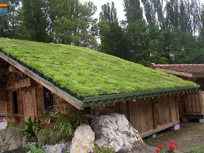 Pasos Para Construir Un Peque 241 O Techo Verde