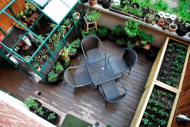 Jardín permacultura VL