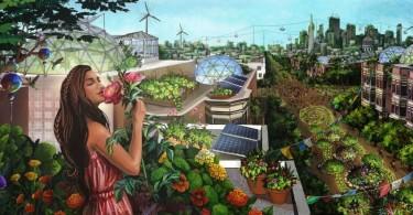 permaculture-future
