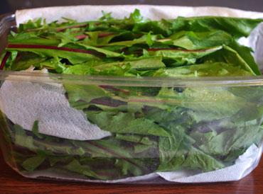 C mo almacenar frutas y vegetales para evitar que se pudran - Como almacenar perchas ...