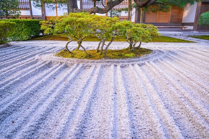 Jardín zen árboles