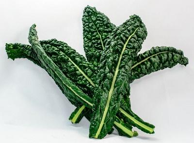 Kale plus d'aliments alcalins