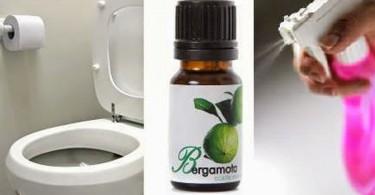 como-hacer-un-desodorante-natural-para-el-ba-C3-B1o