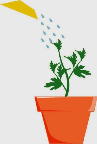 crecer tomates al revés paso 2