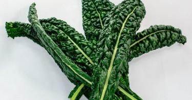 Kale vegetales hoja verde