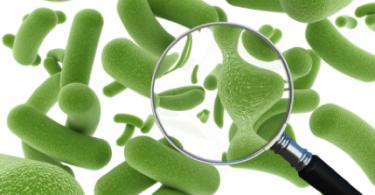 probiotics-istock-2.11.13