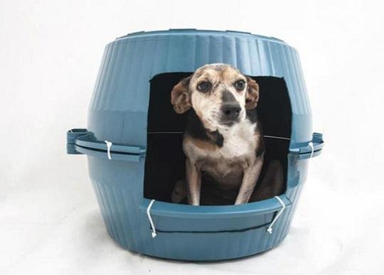 camas para mascotas botes