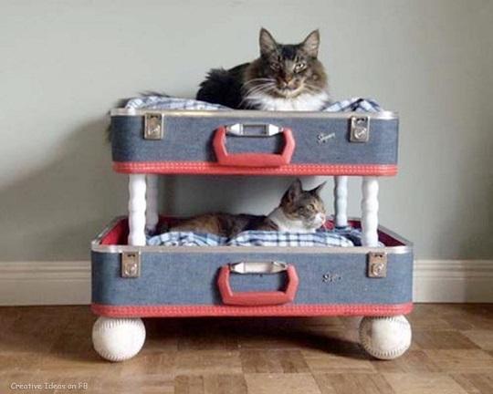camas para mascotas reciclando