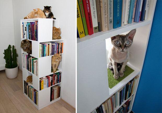cama para mascotas librero