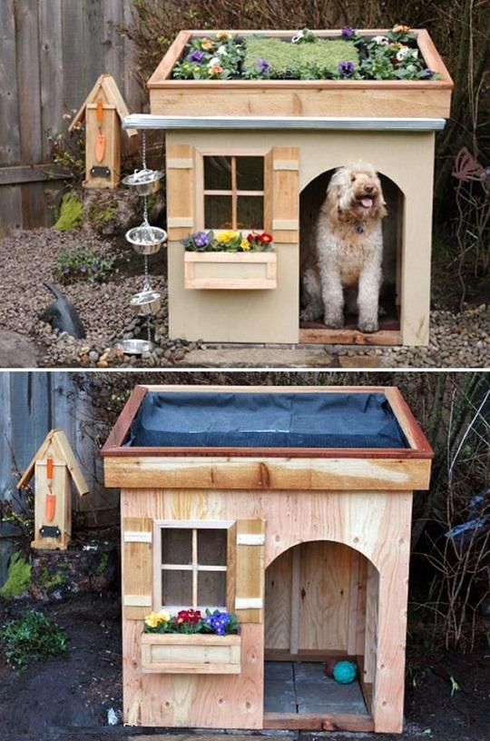 33 ideas de guaridas y camas para consentir a tus mascotas for Ahuyentar gatos de mi jardin
