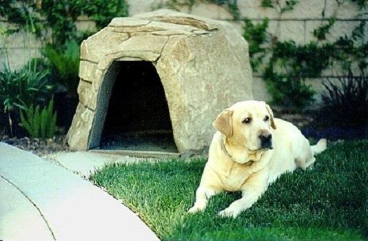 camas para mascotas piedra