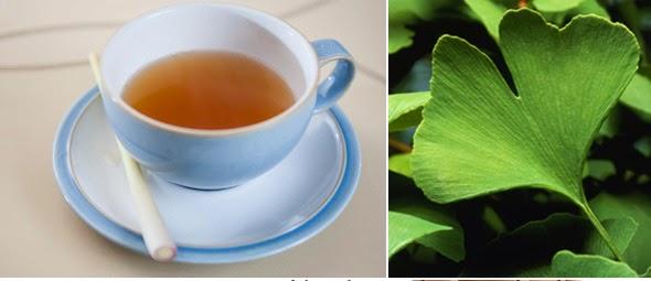 Ginkgo biloba usado como medicina natural