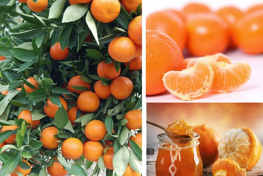 mandarina para la digestión