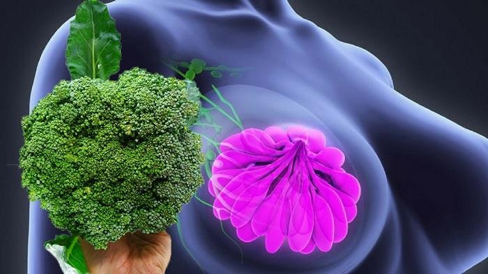tumores pueden ser prevenidos comiendo brócoli
