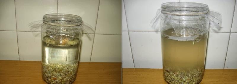 Rejuvelac, agua enzimática para rejuvenecer2
