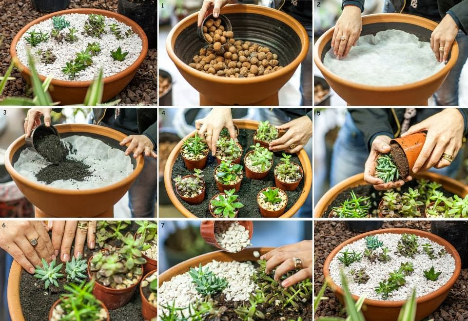 30 ideas creativas con plantas para decorar tu hogar y for Adornos jardin baratos