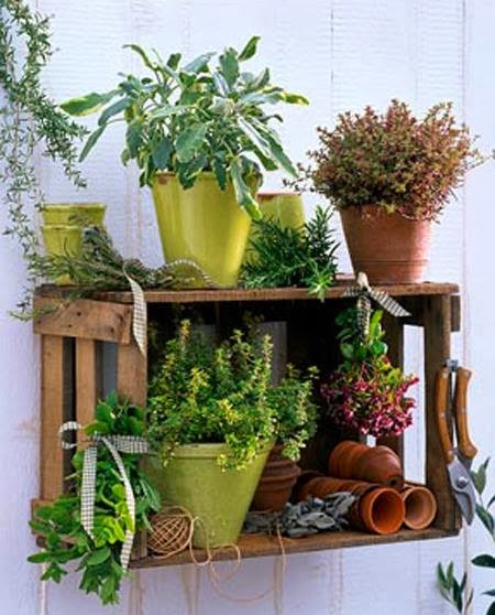 30 ideas creativas con plantas para decorar tu hogar y jard n for Plantas para decorar jardines
