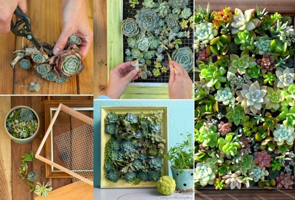 30 ideas creativas con plantas para decorar tu hogar y for Decoraciones sencillas para el hogar