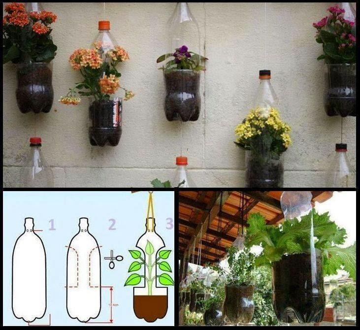 ideas creativas con plantas para decorar tu hogar y jardn